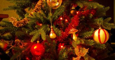 Program activități Sărbători de iarnă